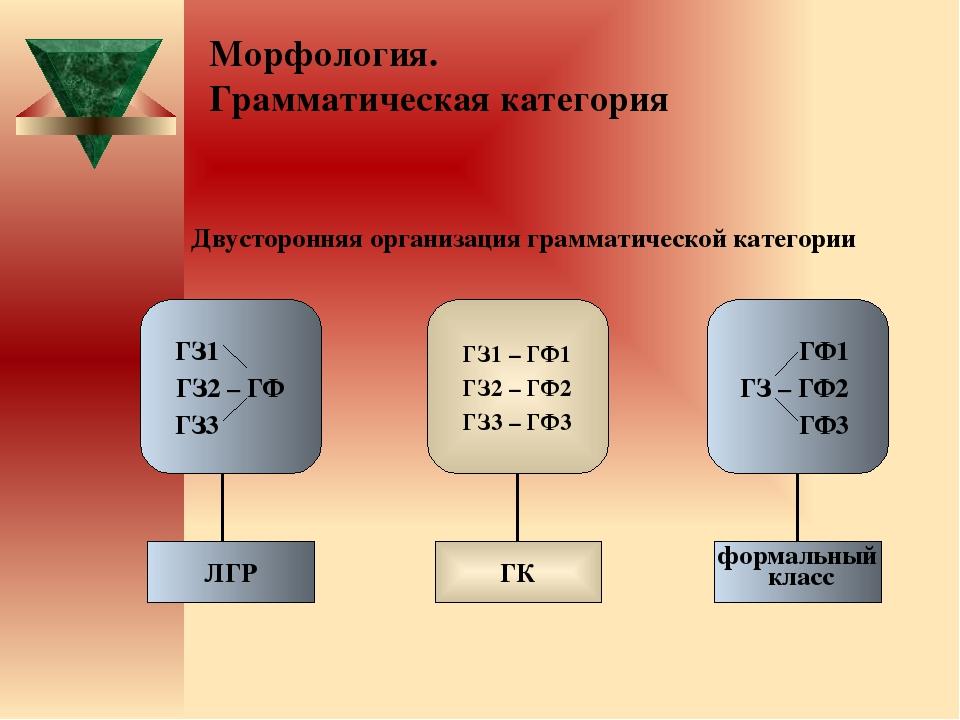 Морфология. Грамматическая категория  Двусторонняя организация грамматическо...