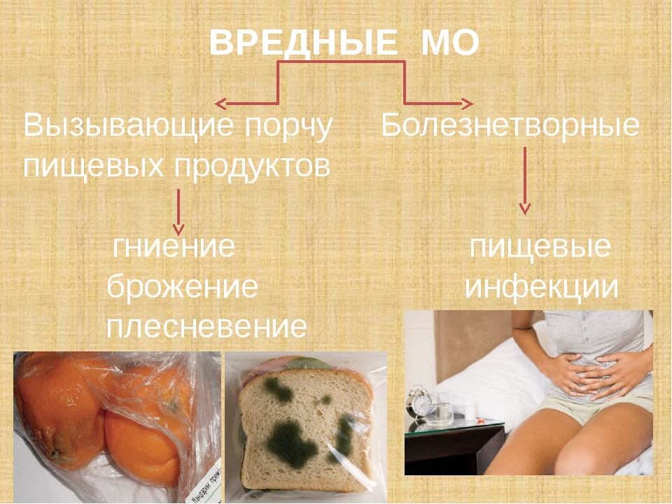 санитарно-гигиенические требования: 1) Перед приемом и приготовлением пищи об...