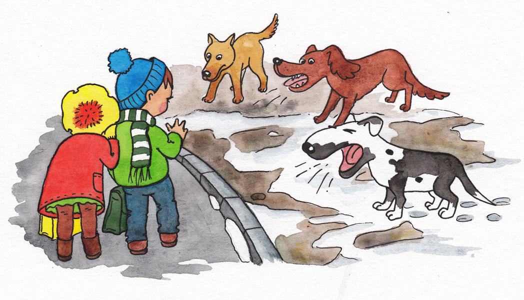 Картинка безопасное общение с животными