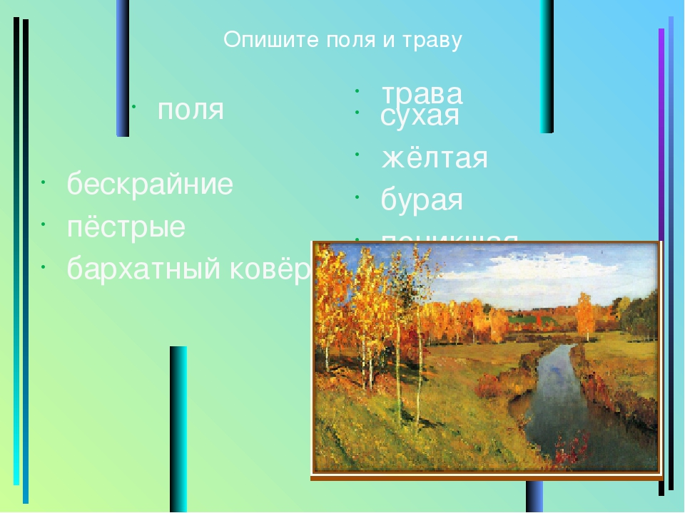 Опишите поля и траву поля бескрайние пёстрые бархатный ковёр трава сухая жёлт...