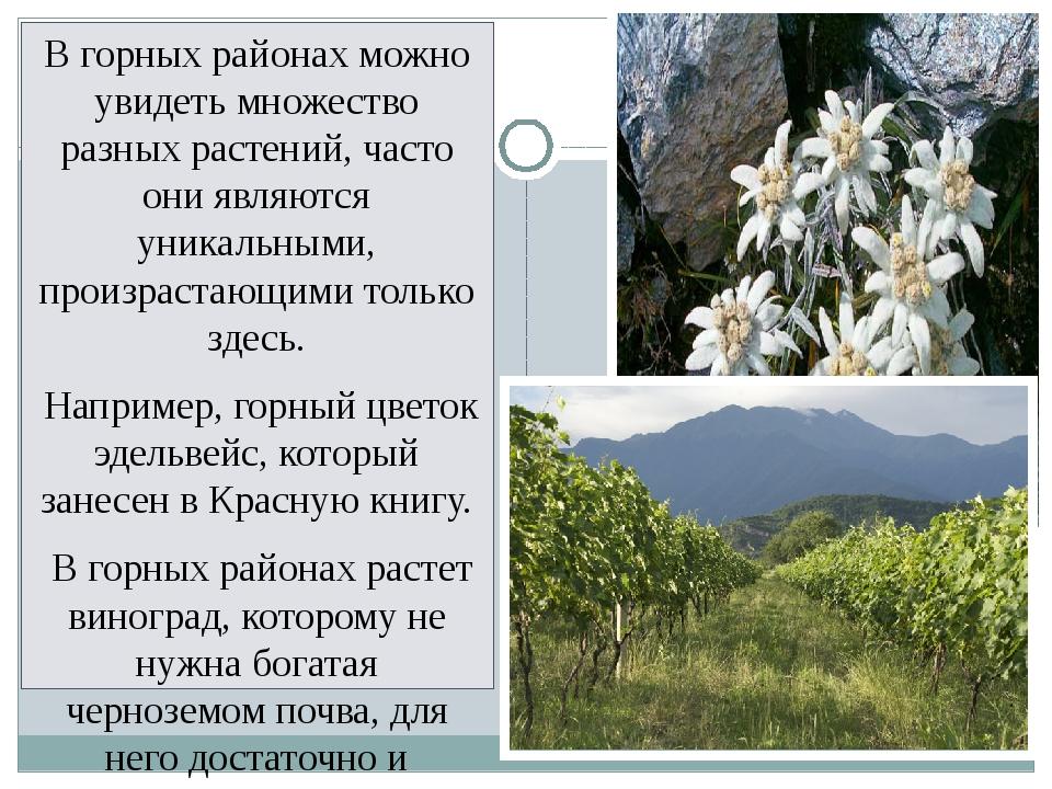 В горных районах можно увидеть множество разных растений, часто они являются...