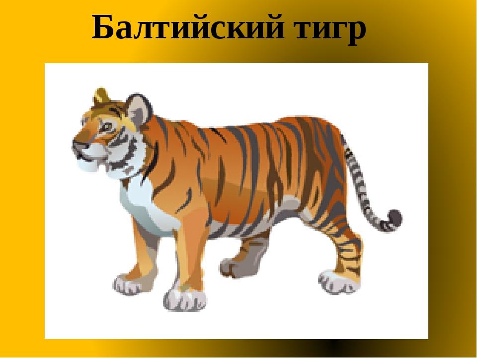 Балтийский тигр