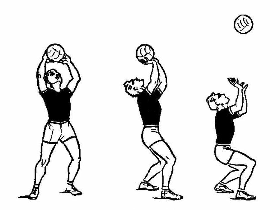 прием мяча волейбол картинки латунь крепления часовых