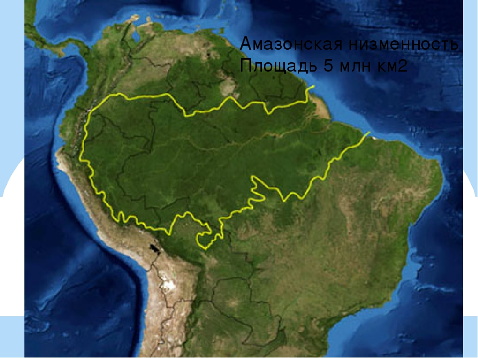 Амазонская низменность Площадь 5 млн км2