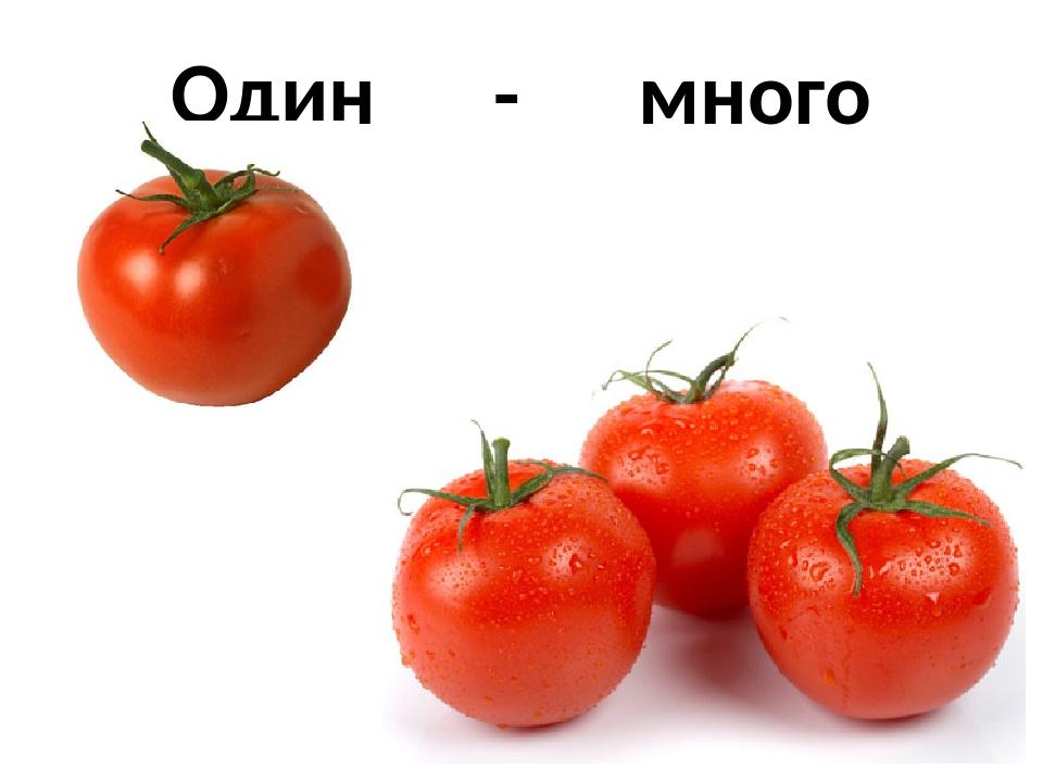Овощи много картинки для детей