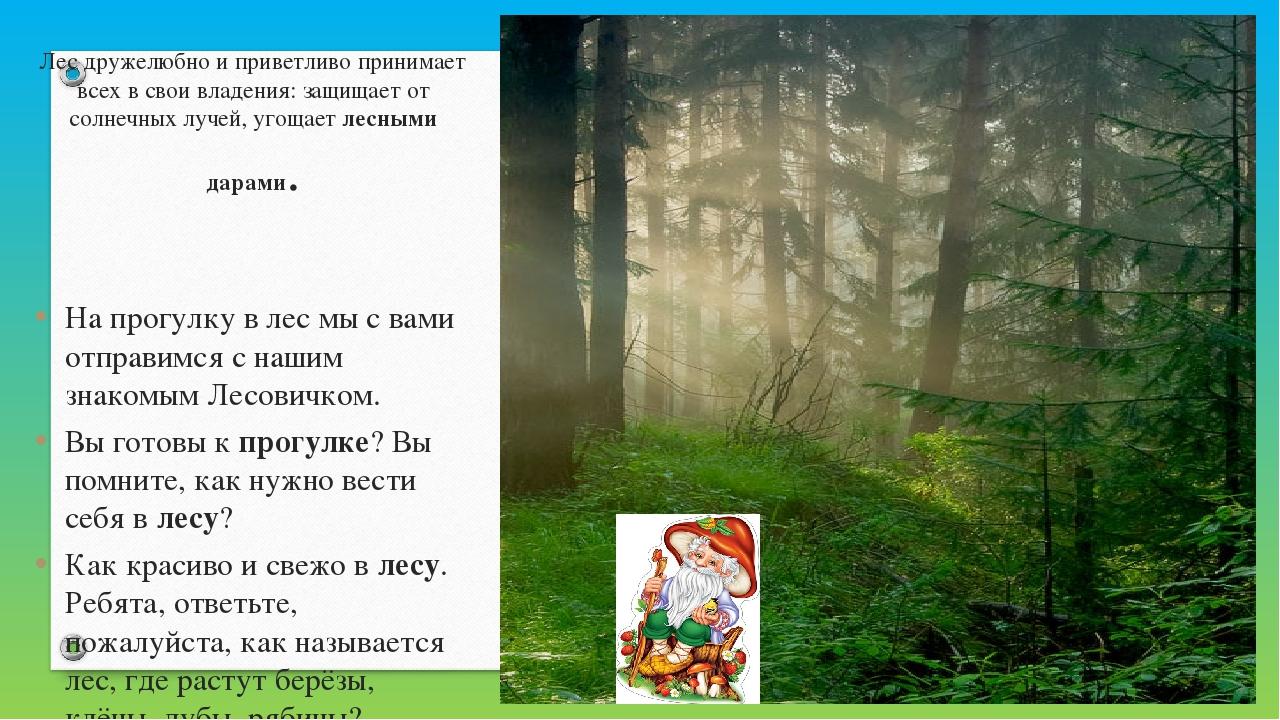 Лес дружелюбно и приветливо принимает всех в своивладения: защищает от солне...