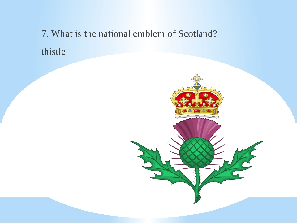 7. What is the national emblem of Scotland? thistle