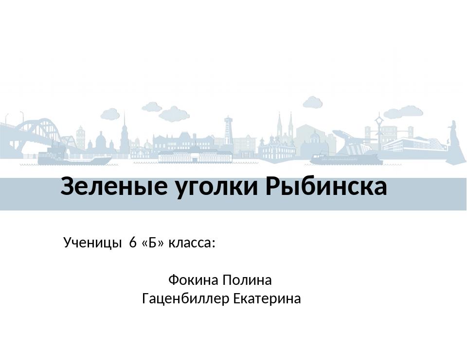 Зеленые уголки Рыбинска Ученицы 6 «Б» класса: Фокина Полина Гаценбиллер Екате...