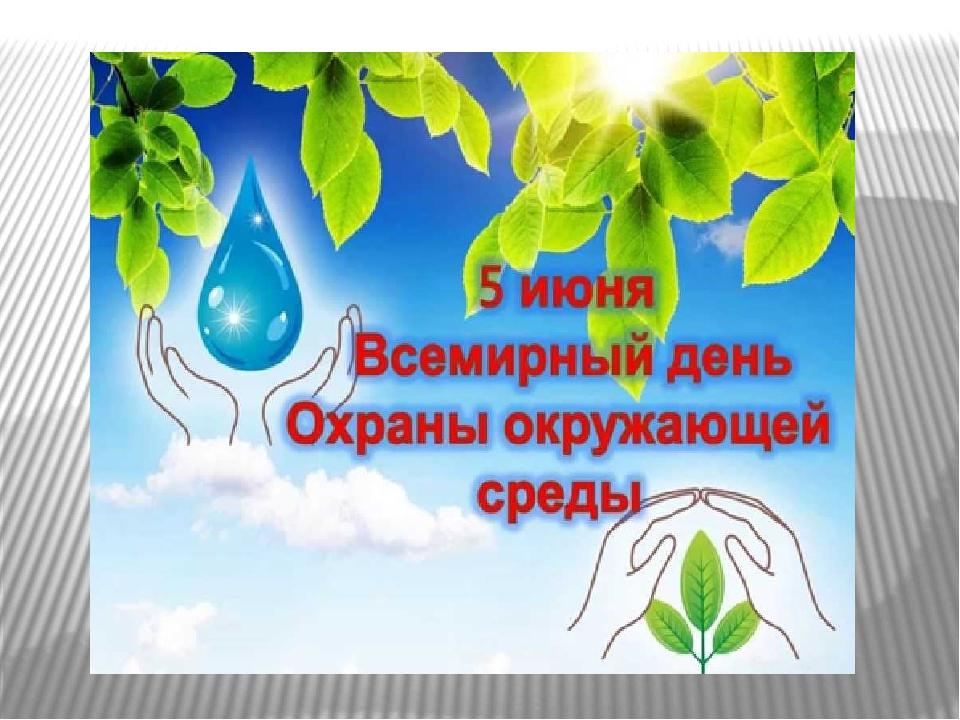 Экологический квест