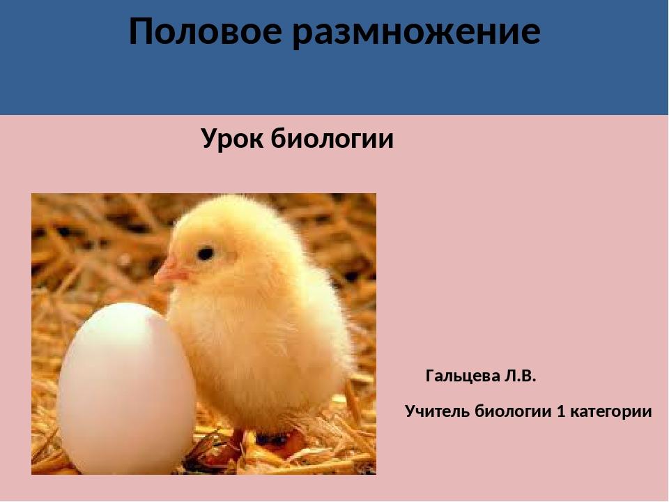 Половое размножение Урок биологии Гальцева Л.В. Учитель биологии 1 категории