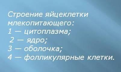 hello_html_1b9323e5.jpg