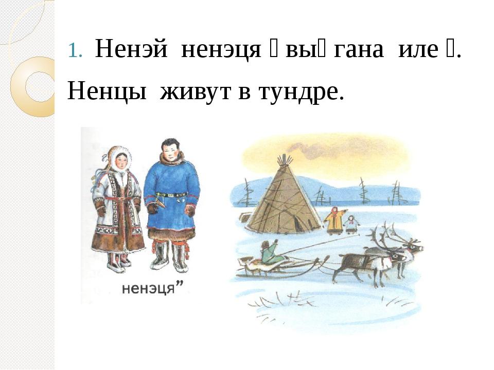 Ненэй ненэця״ выӈгана иле״. Ненцы живут в тундре.