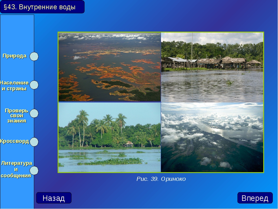 §43. Внутренние воды Назад Вперед Рис. 39. Ориноко Природа Население и стран...