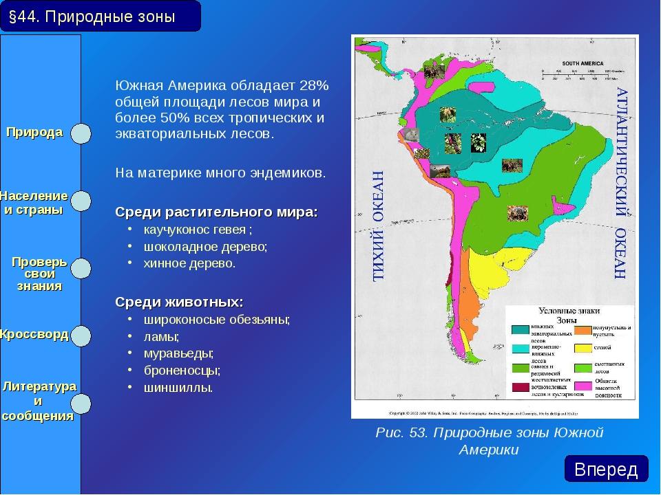Южная Америка обладает 28% общей площади лесов мира и более 50% всех тропиче...