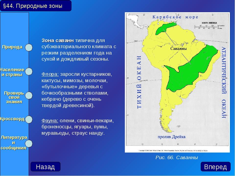 Зона саванн типична для субэкваториального климата с резким разделением го...