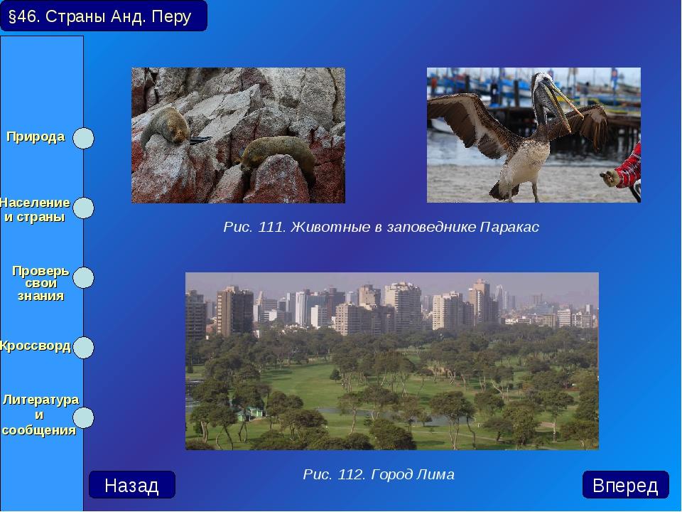 §46. Страны Анд. Перу Рис. 111. Животные в заповеднике Паракас Рис. 112. Горо...