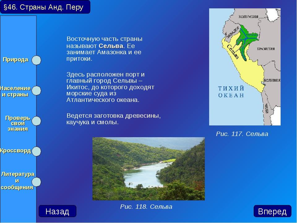 Восточную часть страны называют Сельва. Ее занимает Амазонка и ее притоки....