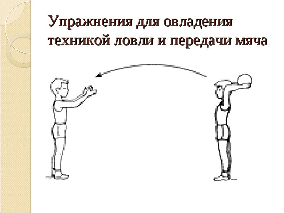 Упражнения для овладения техникой ловли и передачи мяча