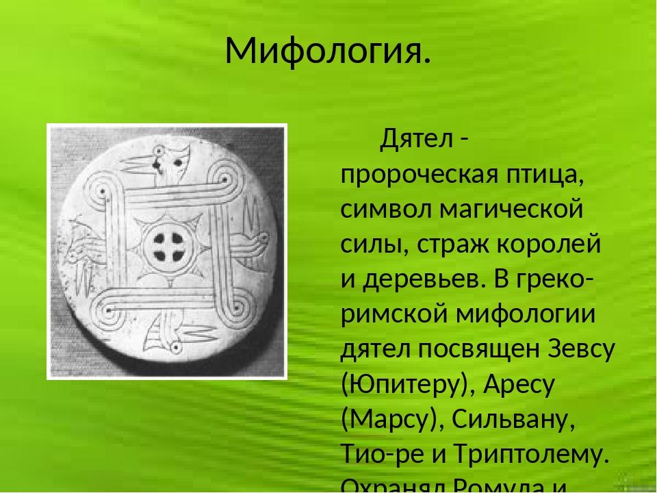 Мифология. Дятел - пророческая птица, символ магической силы, страж королей и...
