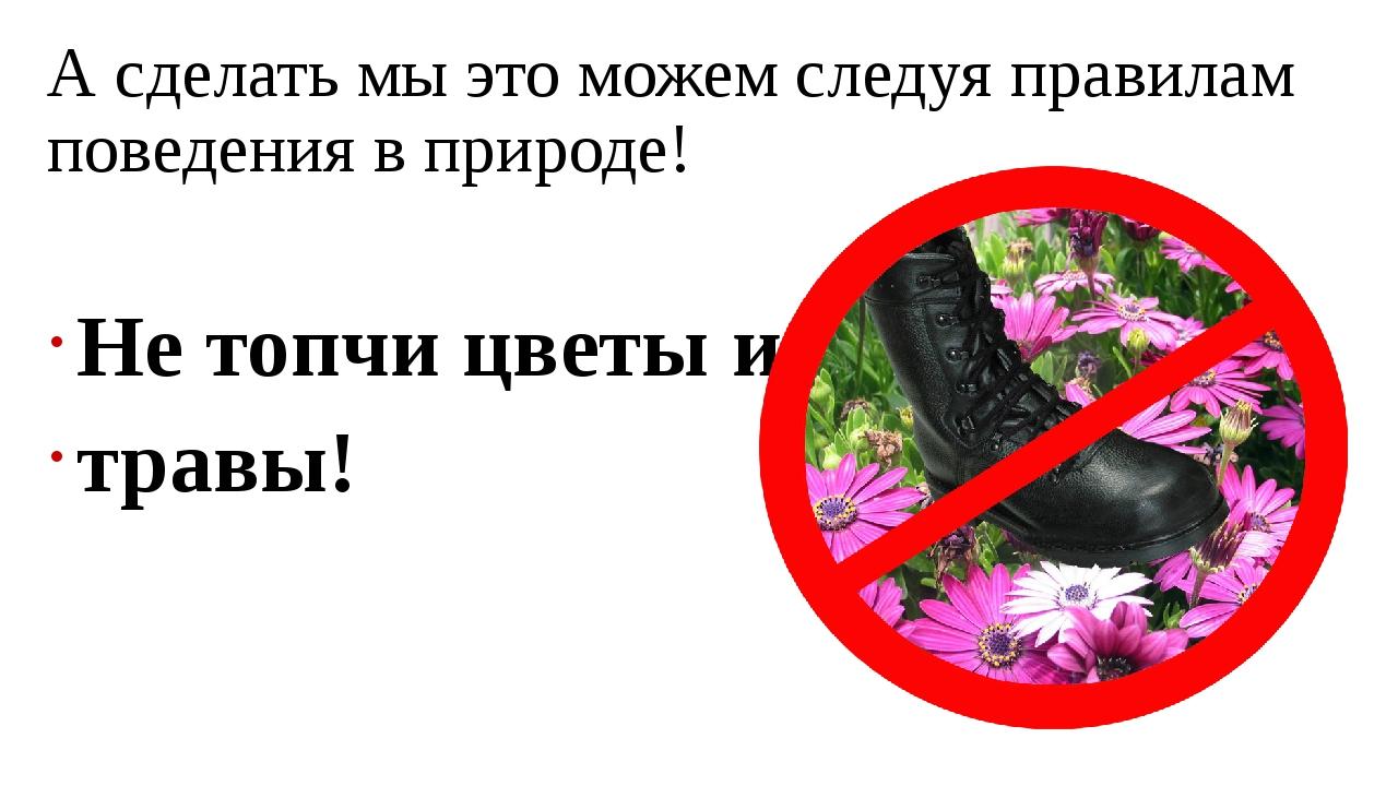 А сделать мы это можем следуя правилам поведения в природе! Не топчи цветы и...
