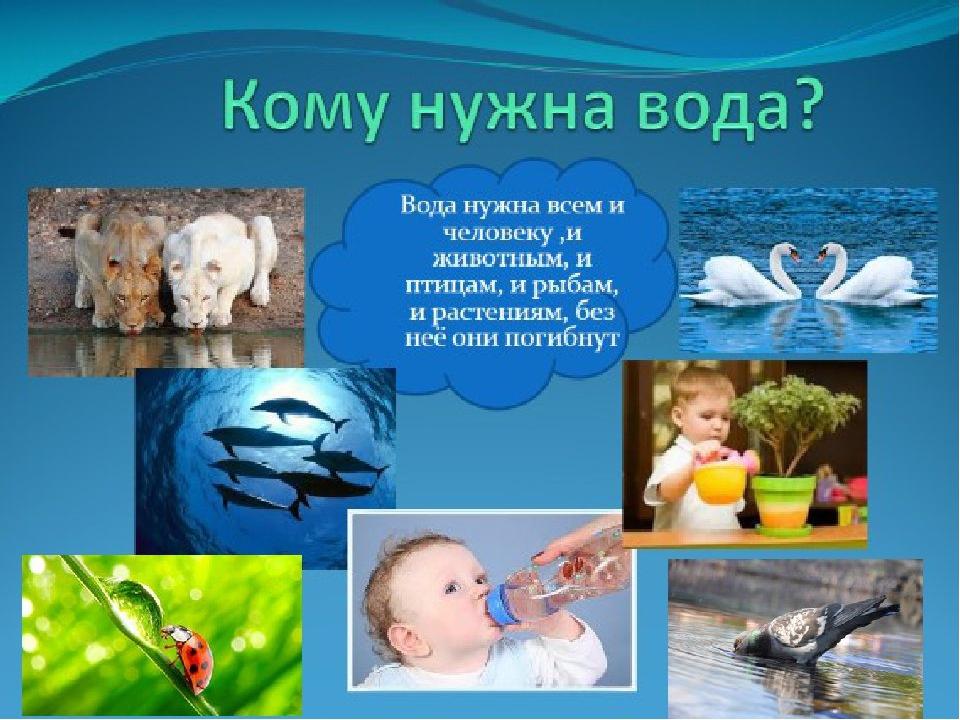 Картинки, картинки о воде для дошкольников