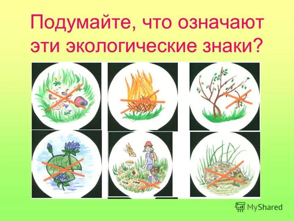Картинки охраны природы весной