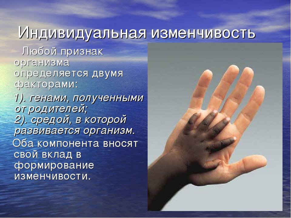 Индивидуальная изменчивость Любой признак организма определяется двумя фактор...