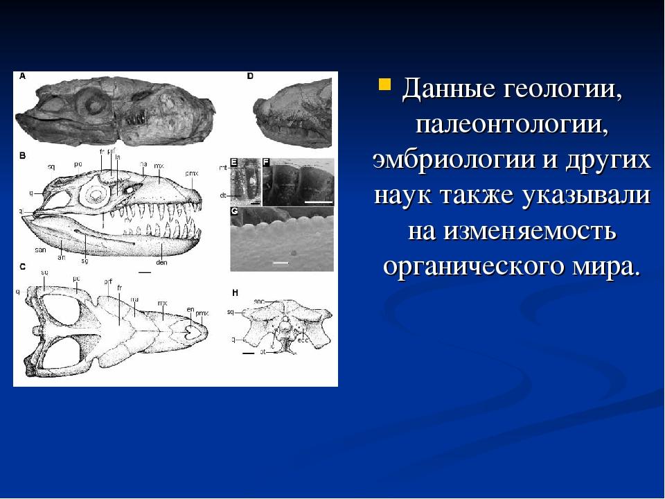 Данные геологии, палеонтологии, эмбриологии и других наук также указывали на...