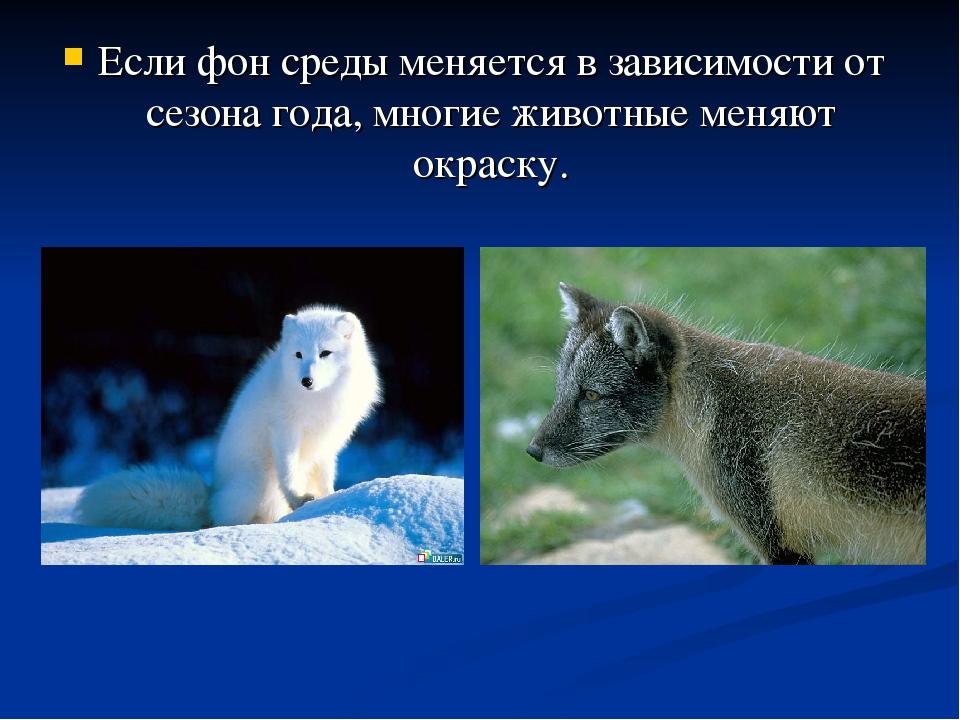 Если фон среды меняется в зависимости от сезона года, многие животные меняют...