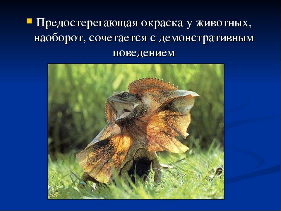 Предостерегающая окраска у животных, наоборот, сочетается с демонстративным п...
