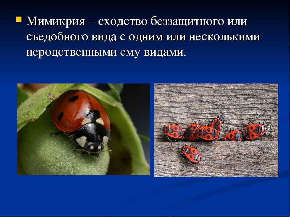 Мимикрия – сходство беззащитного или съедобного вида с одним или несколькими...