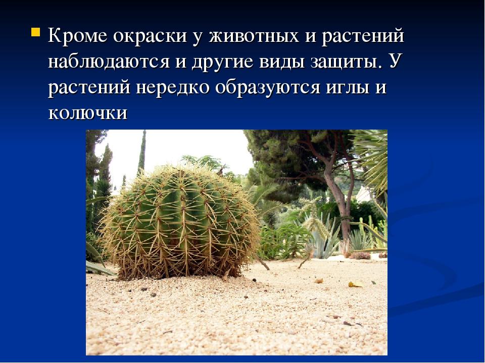 Кроме окраски у животных и растений наблюдаются и другие виды защиты. У расте...
