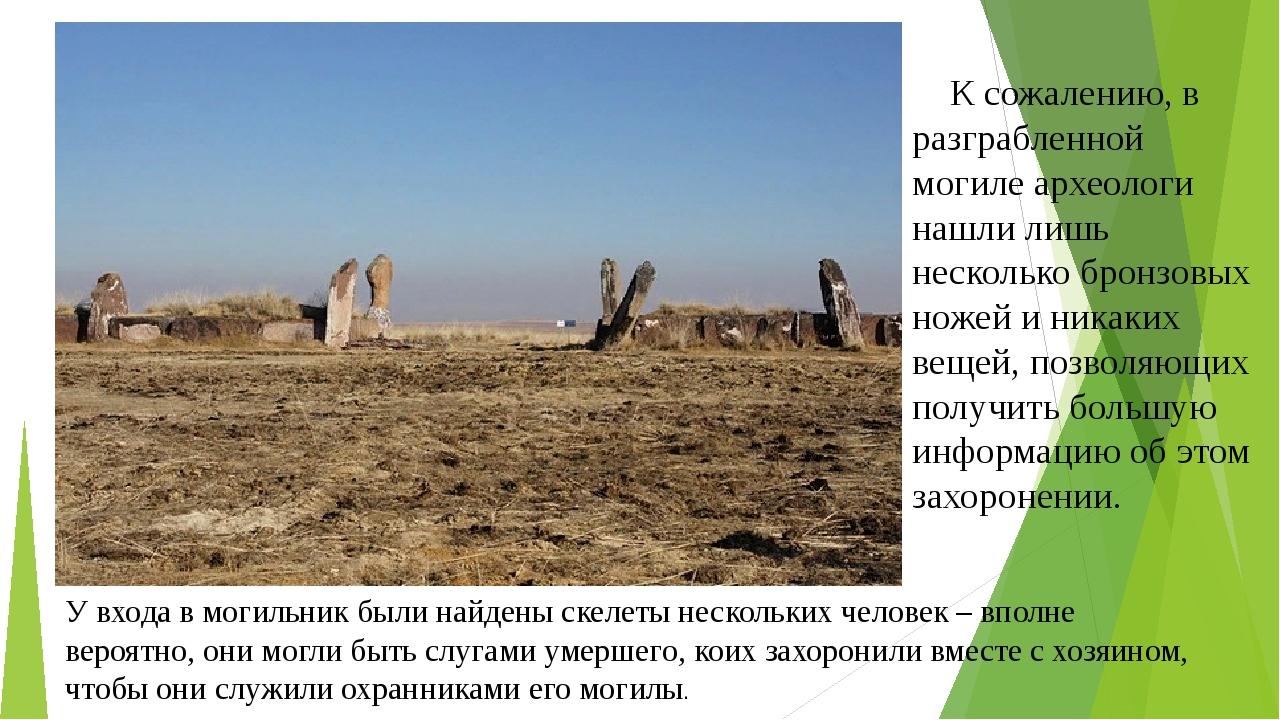 К сожалению, в разграбленной могиле археологи нашли лишь несколько бронзовых...