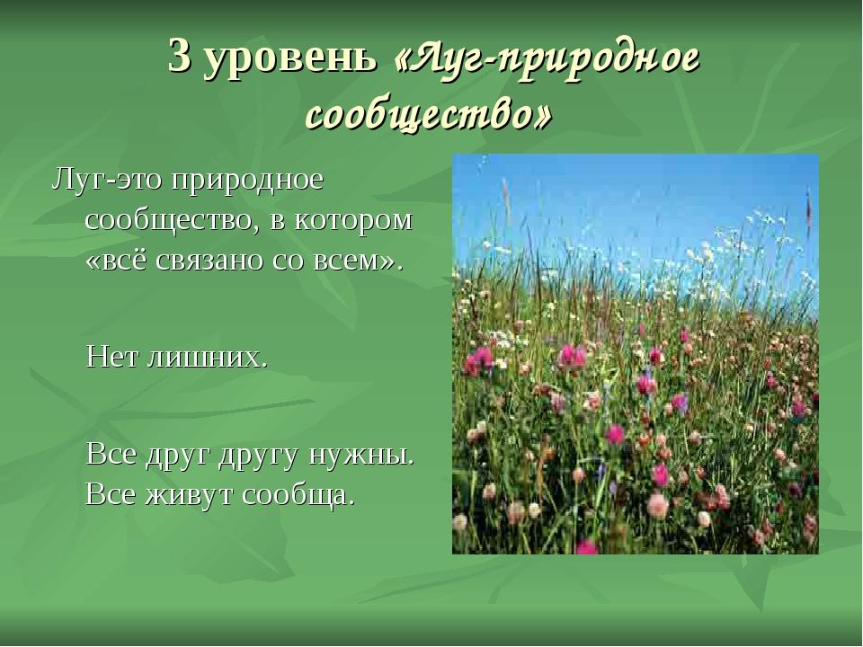 3 уровень «Луг-природное сообщество» Луг-это природное сообщество, в котором...