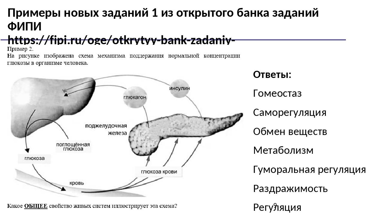 Примеры новых заданий 1 из открытого банка заданий ФИПИ https://fipi.ru/oge/o...