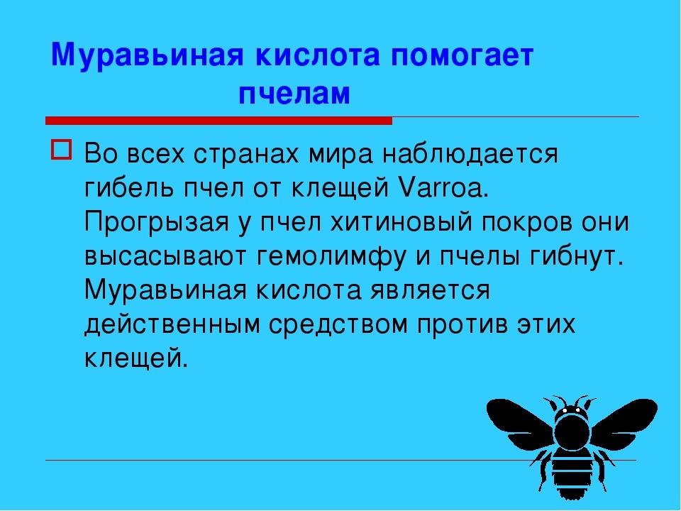 Муравьиная кислота помогает пчелам Во всех странах мира наблюдается гибель пч...