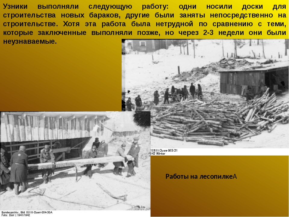 Узники выполняли следующую работу: одни носили доски для строительства новых...