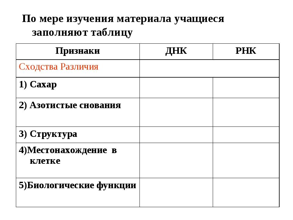 По мере изучения материала учащиеся заполняют таблицу ПризнакиДНКРНК Схо...