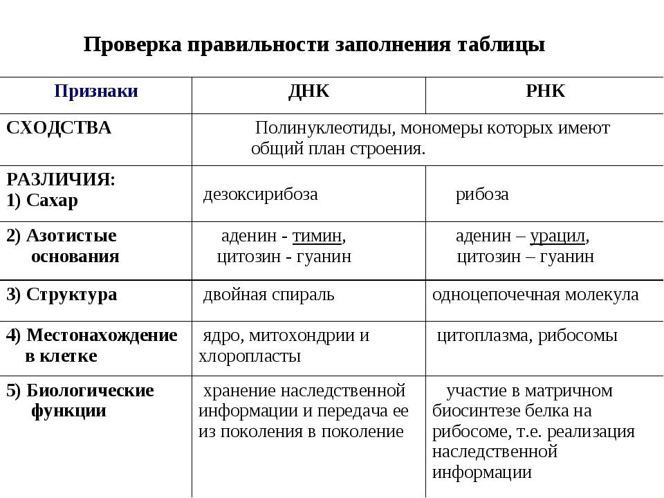 Проверка правильности заполнения таблицы ПризнакиДНКРНК СХОДСТВА Полинукл...