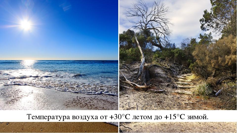 Температура воздуха от +30°С летом до +15°С зимой.