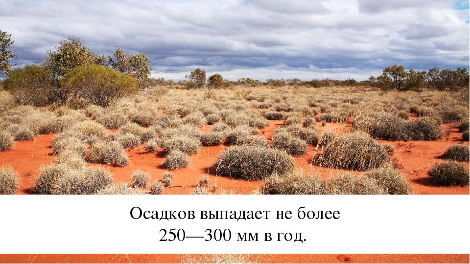 Осадков выпадает не более 250—300 мм в год.