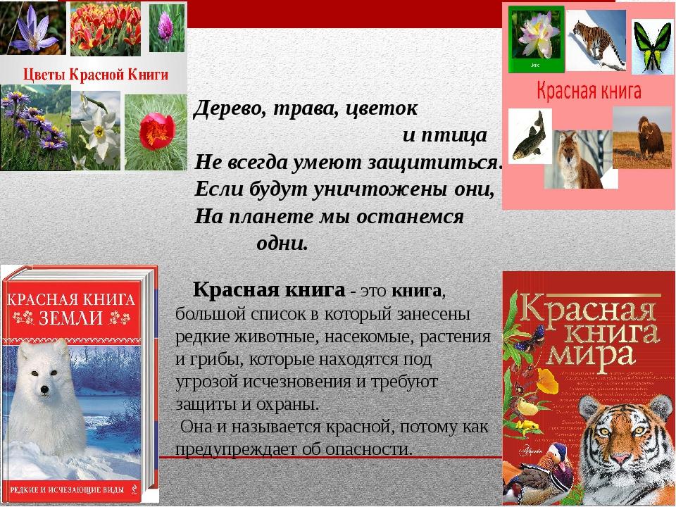 Краснаякнига- этокнига, большой список в который занесены редкие животные...