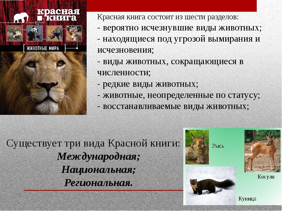 Красная книга состоит из шести разделов: - вероятно исчезнувшие виды животных...