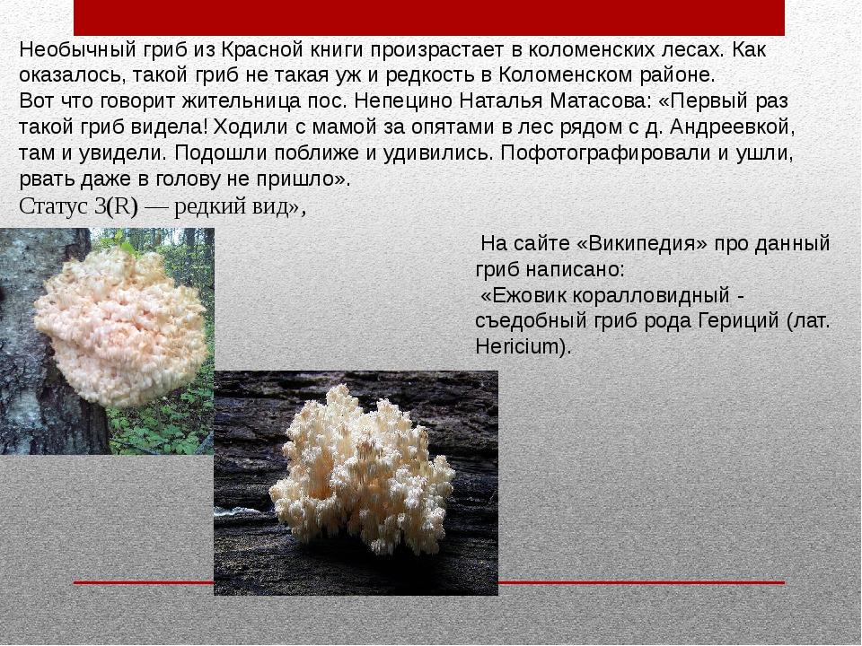 Необычный гриб из Красной книги произрастает в коломенских лесах. Как оказал...