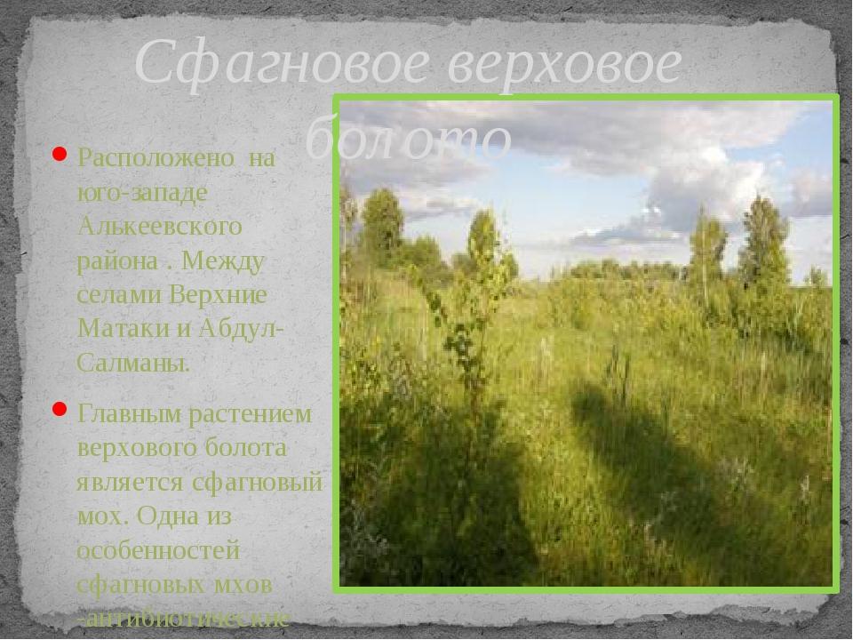 Расположено на юго-западе Алькеевского района . Между селами Верхние Матаки и...