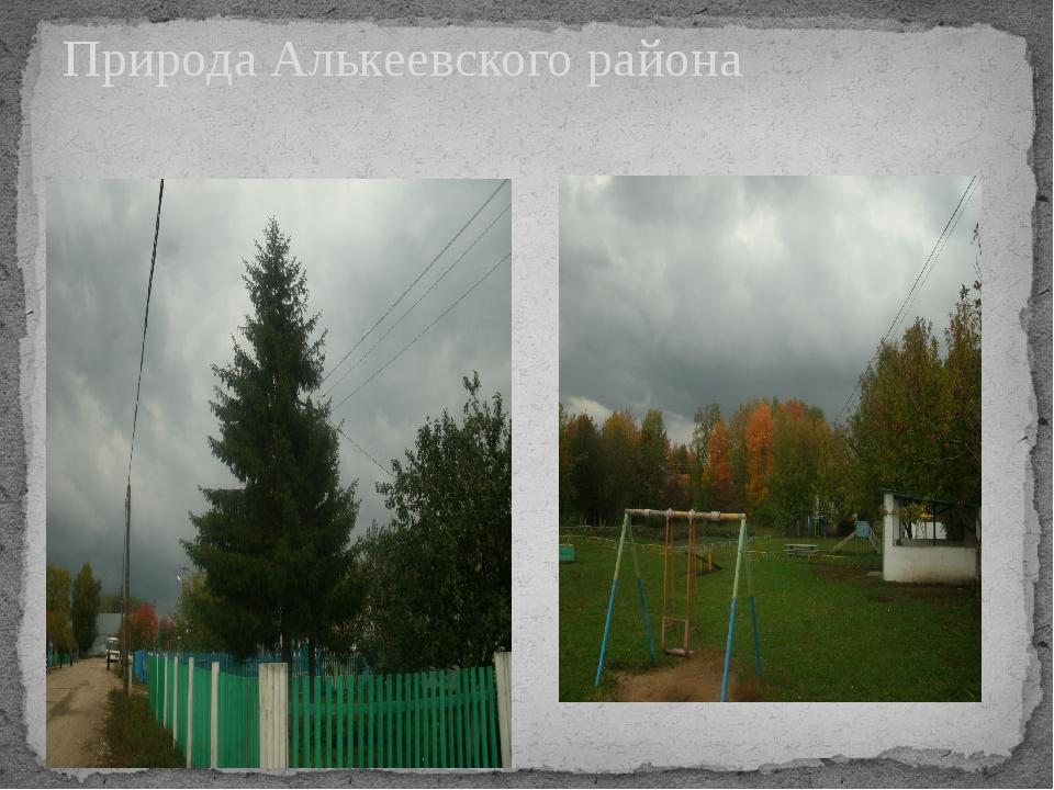 Природа Алькеевского района