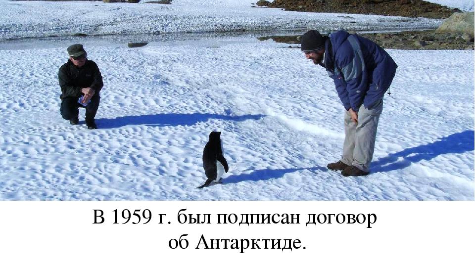 В 1959 г. был подписан договор об Антарктиде.