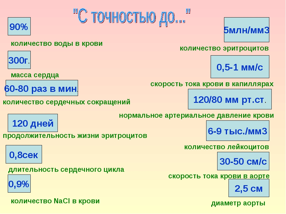 90% 60-80 раз в мин. 0,8сек 120 дней 0,9% 6-9 тыс./мм3 30-50 см/с 120/80 мм р...
