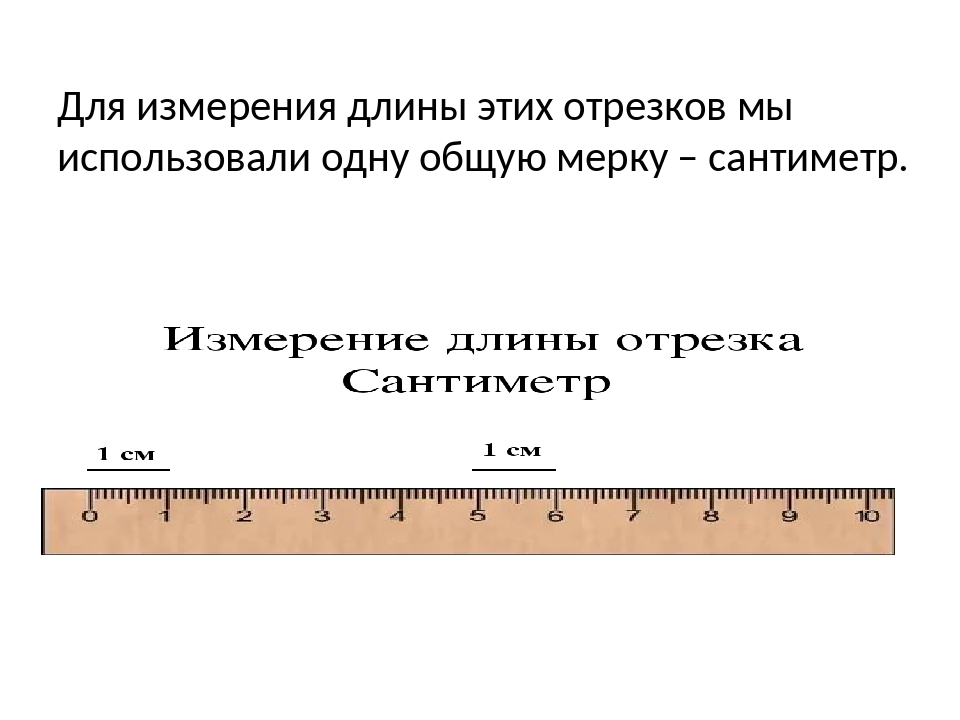 Для измерения длины этих отрезков мы использовали одну общую мерку – сантиметр.