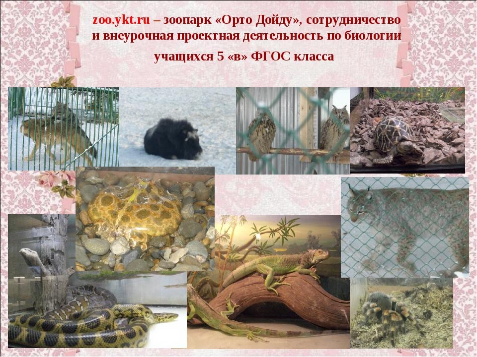 zoo.ykt.ru – зоопарк «Орто Дойду», сотрудничество и внеурочная проектная деят...